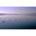 PICTURES OF LANDSCAPES   RELAX IN LAKE