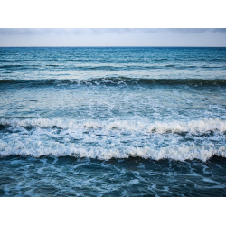 ROYALTY FREE AND FREE IMAGES   SEA