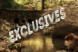 LO GRATIS, NO ES EXCLUSIVO.